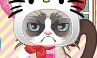 gatito grunon grumpy kitty