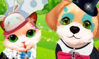 vestir al gatito y perrito