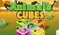 cubos de animales