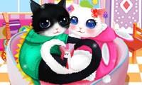 vestir a los gatitos enamorados