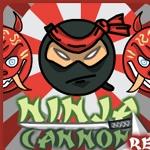 ninja cannon retaliation