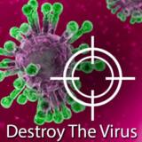 Destruir el Virus